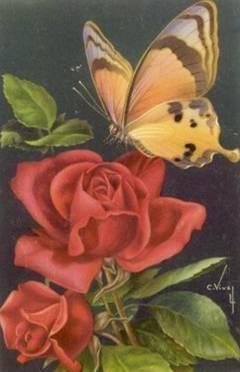 mariposa_flor.jpg