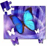 <em>Puzzle...</em>