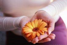 ¿Qué se siente cuando alguien te regala una flor?